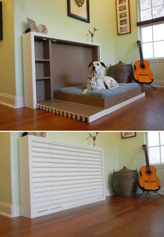 How To Design A Space For Your Dog My Top Picks Bark And Swagger